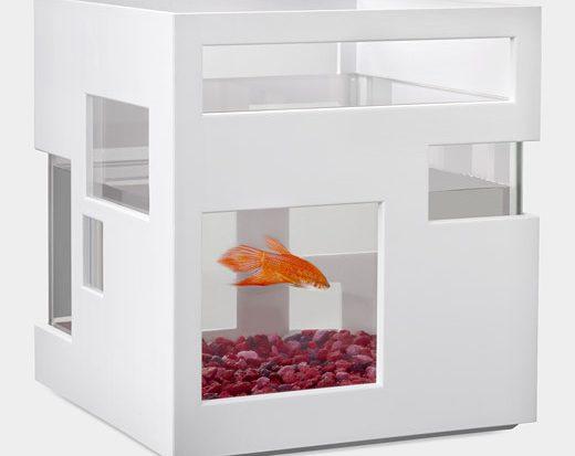 Аквариум Fishhotel